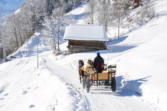 Pferdeschlittenfahrten - Langlaufen in Radstadt, Salzburger Land